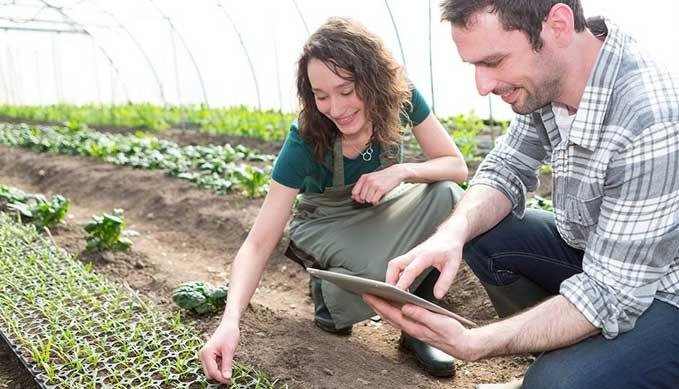 Veredelingssoftware E-Brida voor veredelaars agrarische sector